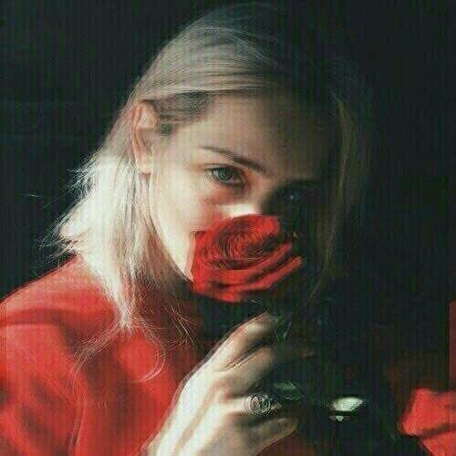 rosesforshawn