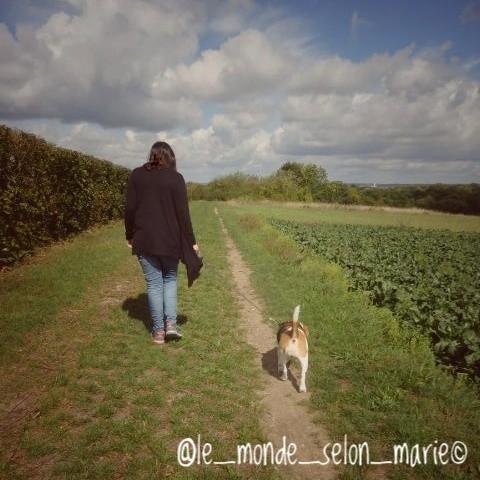 le_monde_selon_marie