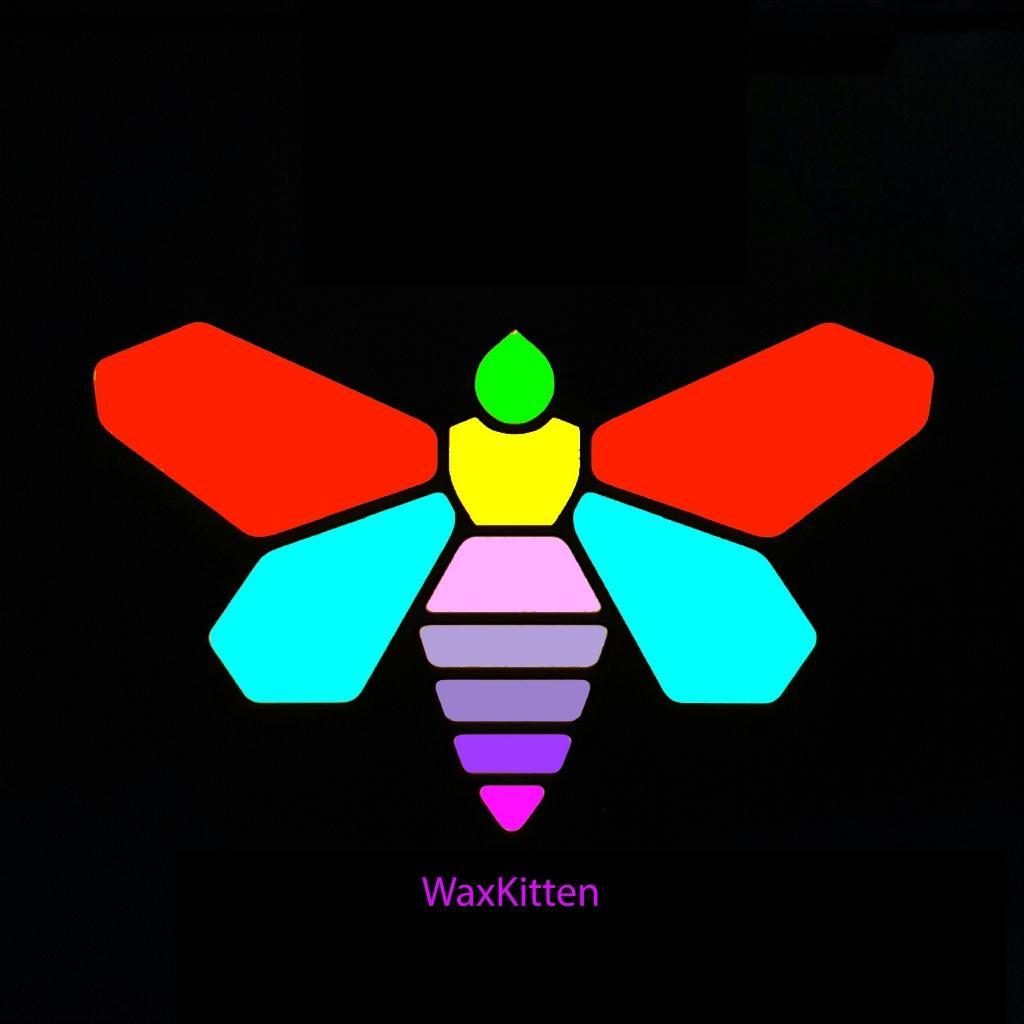 WaxKitten