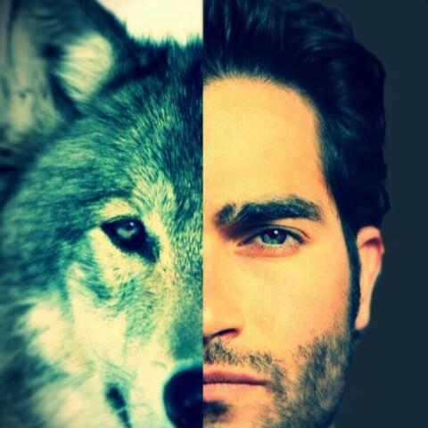 Saphira Wolf